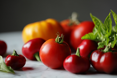 summer tomatoes, photography by engongoro