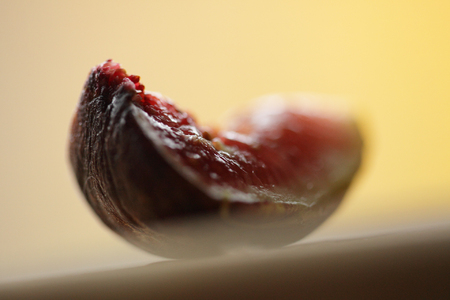 fig in fall, photography by dan engongoro